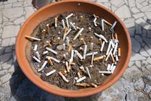 Flower Planter Filled Full Of Cigarette Butts