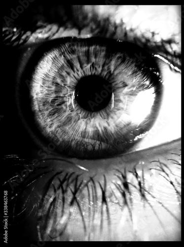 Fotografie, Obraz Detail Shot Of Human Eyes And Lashes