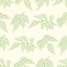 Serrated Leaf Branch Seamless Vector Pattern. Green And Yellow Toothed Foliage Illustration Background.