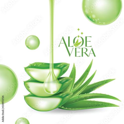 Aloe Vera collagen Serum Skin Care Cosmetic. Canvas Print