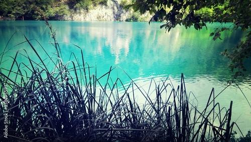 Blue Pond - fototapety na wymiar