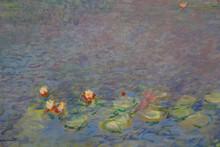 Claude Monet Painting Featured On Large Painting In Musée De L'Orangerie, Paris, France - Shot In August 2015