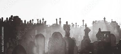 Fotografia Waverley Cemetery At Dusk