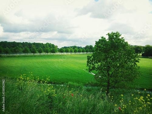 Fototapeta View Of Agricultural Field Against Cloudy Sky obraz na płótnie