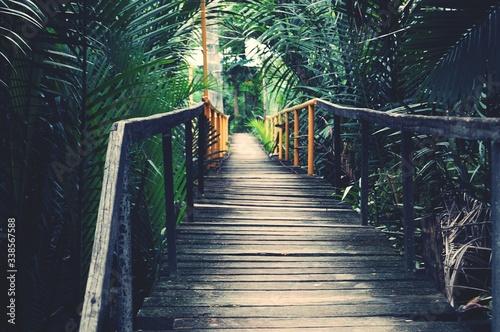 Photo Footbridge In Park