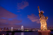 View Of Statue Of Liberty At Night