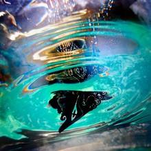 Brooch Floating On Water