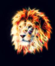 Lion Head On Black Background. Fractal Effect.