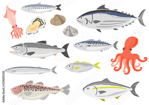 Obraz na plátně 旬の魚介類 セット
