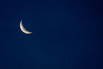 Obraz na płótnie Canvas Low Angle View Of Moon Against The Clear Blue Sky