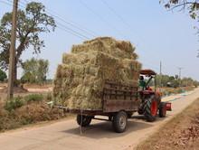 Large Straw Bales Stacked  Loa...