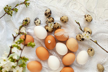 Easter Eggs Card In Provence French Style. Mix Of Chicken And Quail Eggs Of Natural Color, Blossoming Cherry And Apricots Branches And Feathers On Delicate White Scarf Napkin, Selective Focus