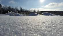 Fresh Snow In Back Yard