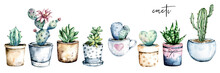 Cactus Potted, Watercolor Painting. Cacti, Succulents Set Isolated On White. Perfectly For Stickers, Greeting Design.