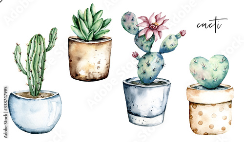 Cuadros en Lienzo Cactus potted, watercolor painting