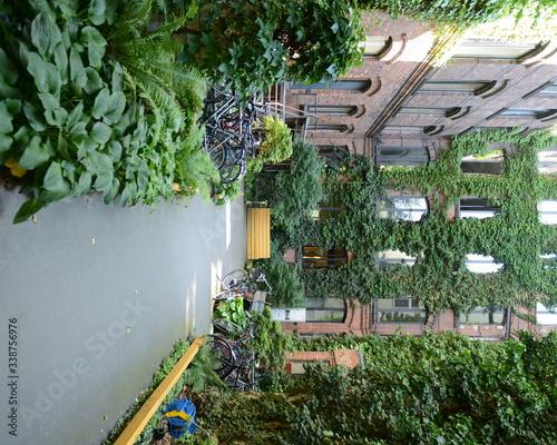 Fototapeta Courtyard Of Residential Building