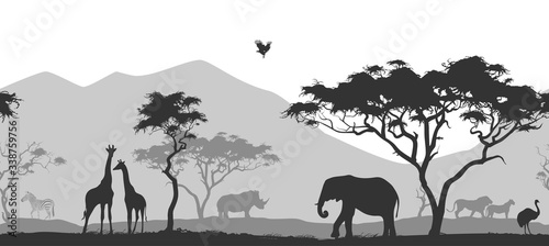 Fototapeta Afryka   horizontal-seamless-background-with-africa-nature-all-animals-and-trees-are-isolated-you