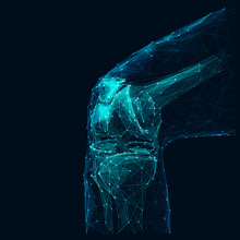Human Knee Low Poly Wireframe ...