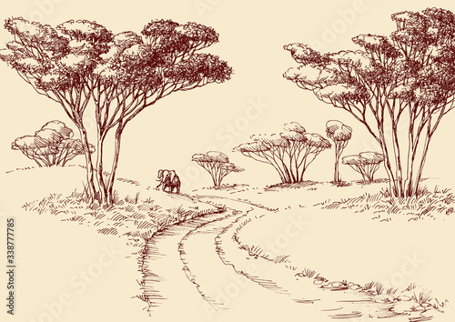 African landscape hand drawing Poster Mural XXL