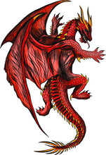 Mythical Fairy Red Dragon Vector