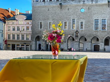 Street Cafe Table Top Yellow  Tablecloth And Glass Of Roses Flowers Bouquet Flavor And Spring Mimosa In Tallinn Old Town Hall Square   Lifestyle People  Travel To Estonia