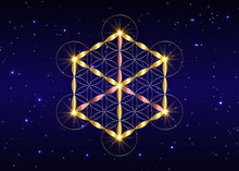 Sacred Geometry, Flower Of Lif...