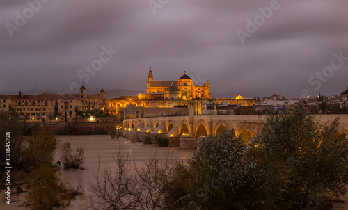Fototapeta night view beyond the Roman bridge of Cordoba obraz na płótnie