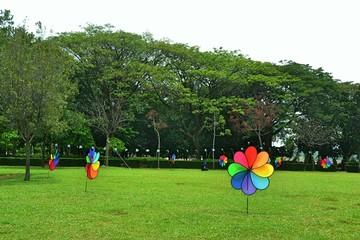 View Of Pinwheel Toys In Field