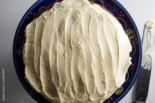 Applesauce cake with honey frosting Canvas Print