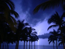 Silhouette Palm Trees At Beach Against Lightning In Sky