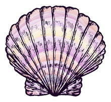 Sea Shell. Inc. Sketch Markers.