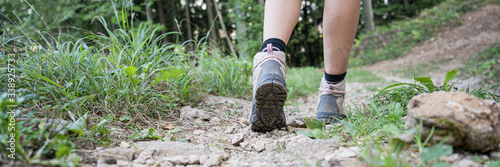 Obraz Female legs in hiking boots on forest trail - fototapety do salonu