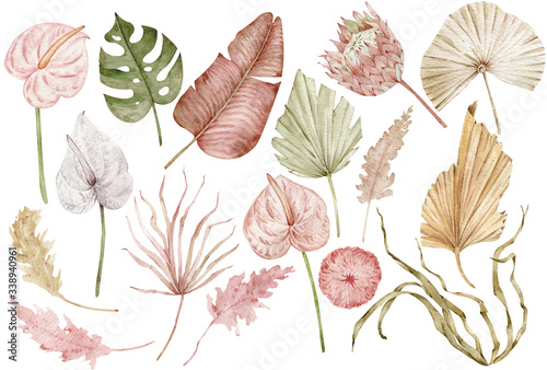 Watercolor tropical clipart with palm leaves, protea and anthurium flowers, dried grass Canvas Print