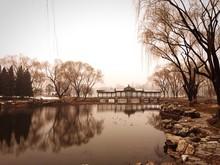 View Of Footbridge Over Lake
