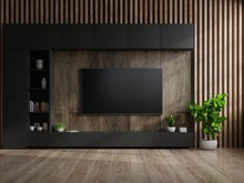 TV On Cabinet In Modern Living Room With Lamp,table,flower And Plant On Wooden Wall Background.