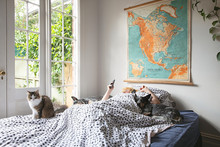 A Teenage Boy Lies In Bed On His Phone With His Cat And 2 Pet Dogs With Vintage School Map From 1958 On The Wall