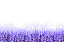 Endless Field Of Lavender Flowers With Lilac Fog On A White Background. Hand Drawn Watercolor. Copy Space.