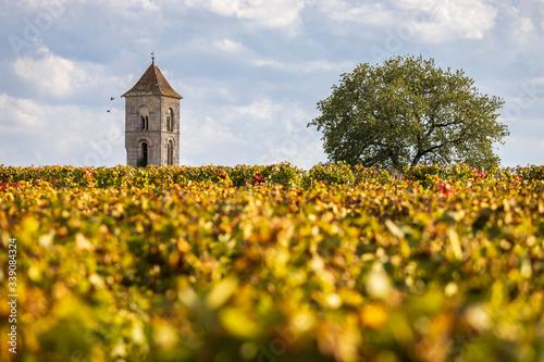 Montagne, le vignoble en appellation Montagne Saint-Emilion au premier plan et l Canvas Print