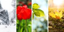 Beautiful Photos Of Nature. Fo...