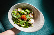 spring salad with radish and mint