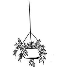 Hanging Plant Illustration