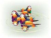 Beautiful Mandarin Ducks Resting In An Peaceful River Side.
