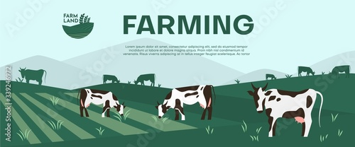 Cows farming on green meadow agricultural business concept. Fotobehang