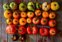 Colorful Tomatoes, Red, Green,...