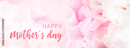 Fotografie, Obraz Banner for website with closeup view of pink eustoma flower