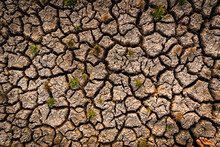 Dry Cracked Soil. Global Warming Concept.
