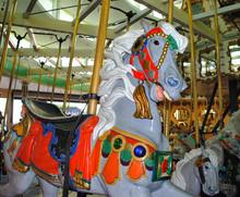 Carousel Horse At Amusement Park