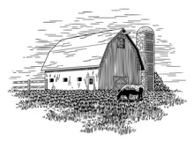 Old Milk Barn And Cow