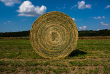 Rolled Up Hay Bale On Field