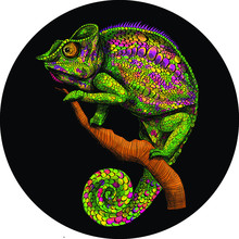 Stylized Chameleon Green Graphics Abstraction On Black Background